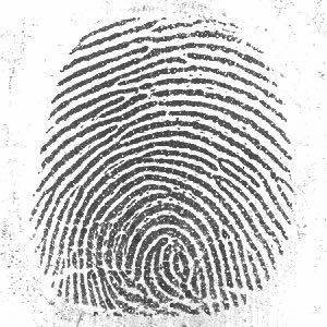 Тестовые и обучающие наборы Отпечаток пальца