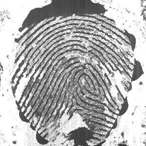 Тестовые и обучающие наборы обмана Отпечаток пальца